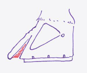 Le basculement de la derni re phalange for Douleur interieur du pied